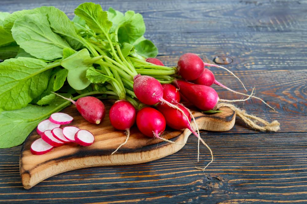 Le radis, un maximum de vertu pour le corps et la santé