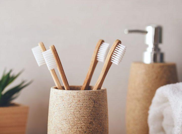 brosse a dent en bambous
