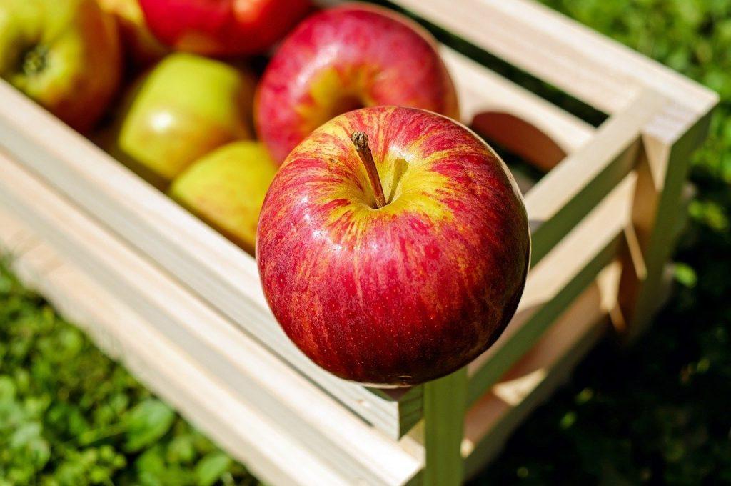bienfaits manger des pommes tous les jours